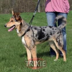 TRIXIE, ARNES ENTRENAMIENTO EASY WALK BASIC