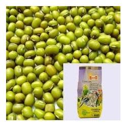 Soja verde granel