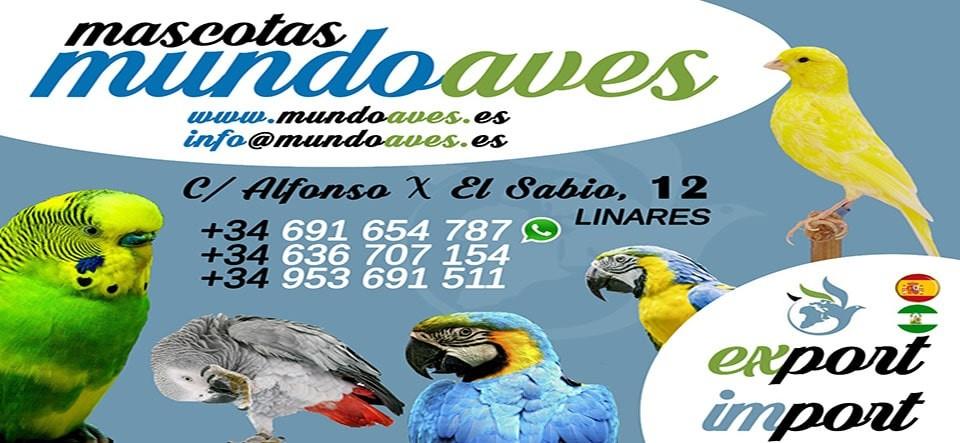 MundoAves