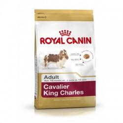 ROYAL CANIN CAVALIER ADULT