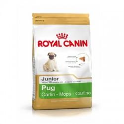 ROYAL CANIN CARLINO JUNIOR