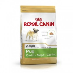 ROYAL CANIN CARLINO ADULT
